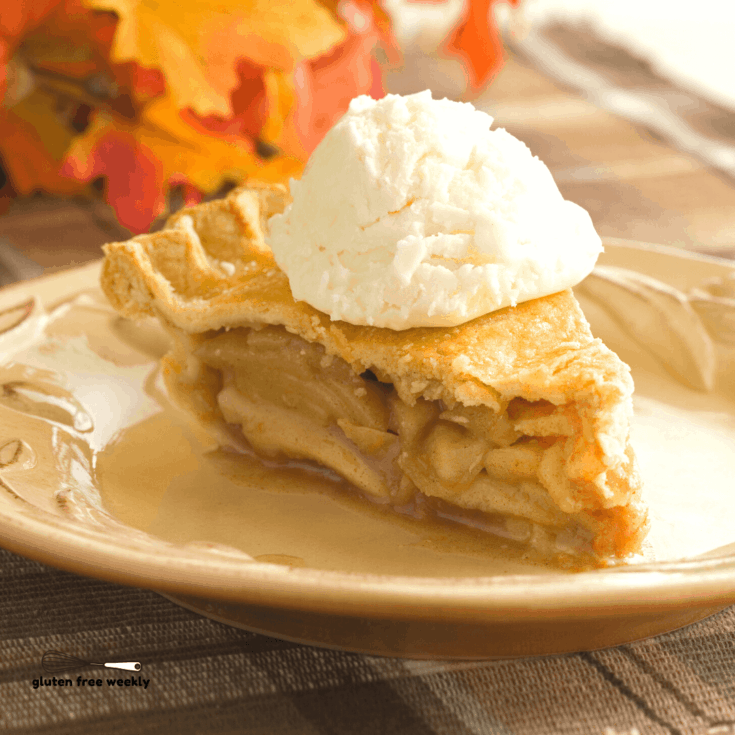 This is The BEST Gluten Free Apple Pie Recipe. It's EASY to make and tastes just like the Original. With Vegan and Other Special Diet Options.