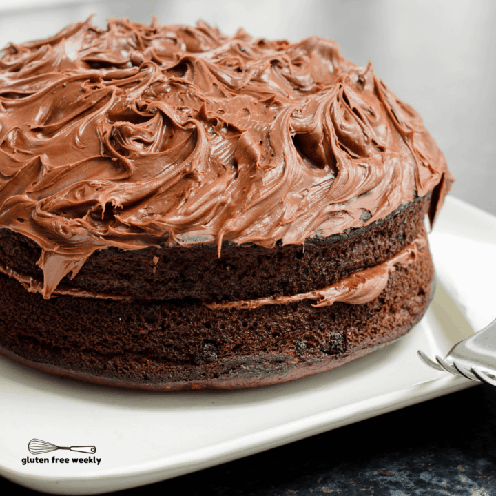 The BEST Gluten Free Moist Chocolate Cake Recipe